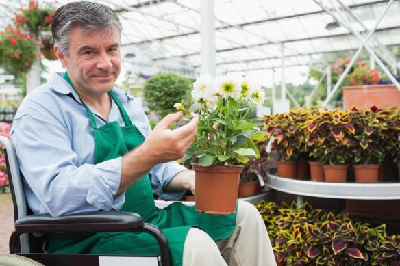 Image of an employee in a wheelchair holding a pot of flowers in a garden centre